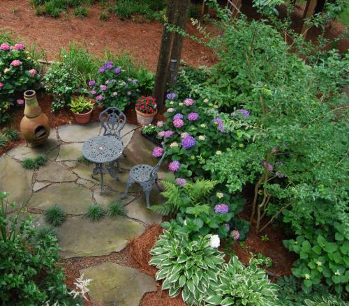 Root & Branch Gardens - Native Plants 9